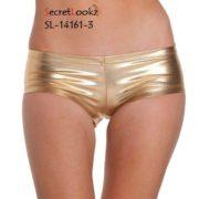 Golden Metallic Glossy Panty